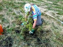 BaumbepflanzungImTherapiegarten_12-06-2014.39