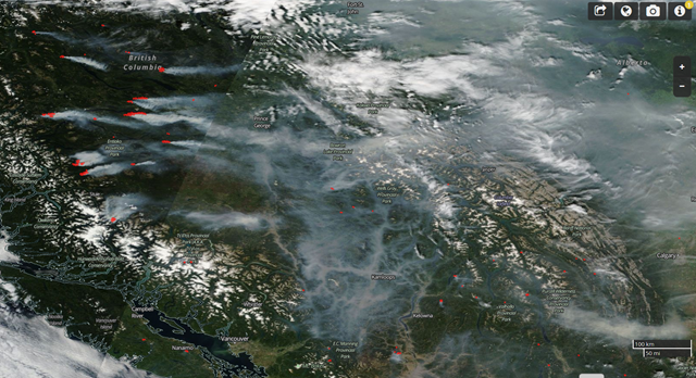 Satellite view of smoke from British Columbia wildfires on 7 August 2018. Photo: NASA Worldview