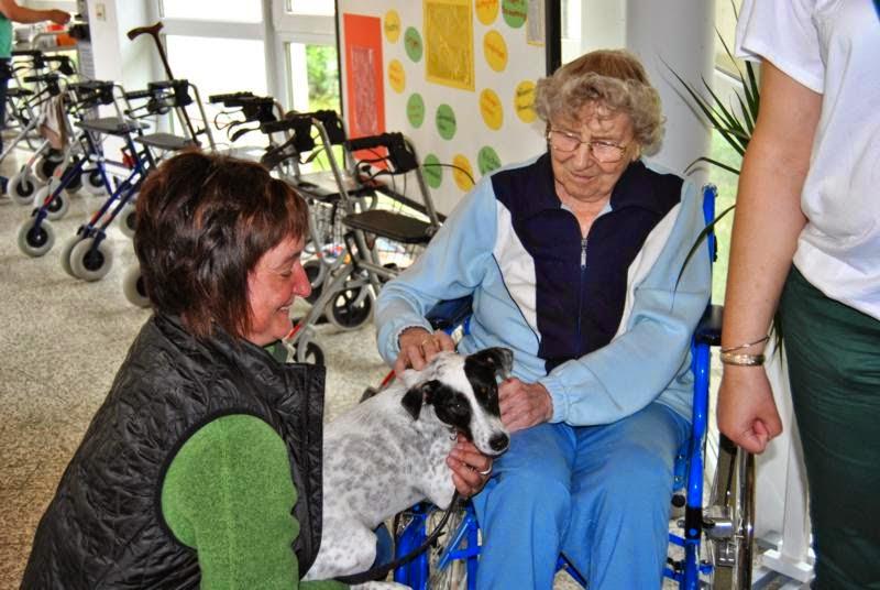 2014-05-27: Besuch im Alten- und Pflegeheim St. Michael - DSC_0254.JPG