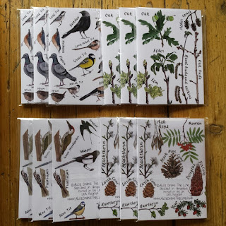 www.AliceDrawsTheLine.co.uk :: Tree and Bird Notebooks