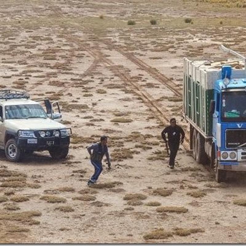 Bolivia: Al menos 116 pasos clandestinos en el límite fronterizo con Chile