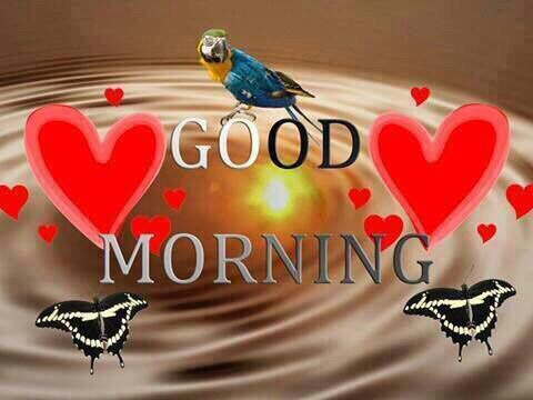 Lovely Good Morning
