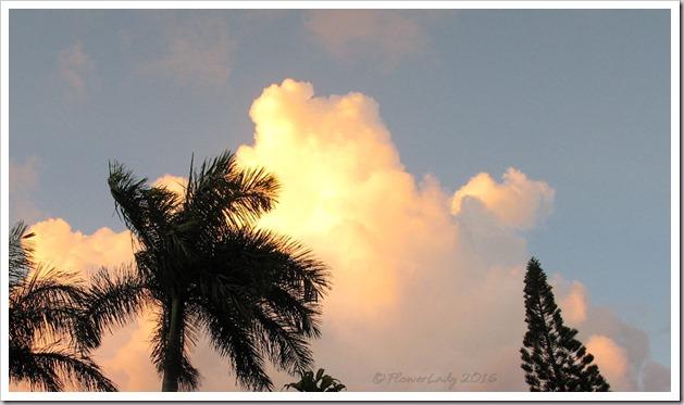 08-28-sunrise2