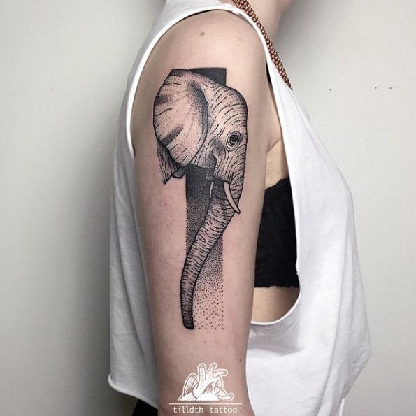 Este dotwork elefante tatuagem