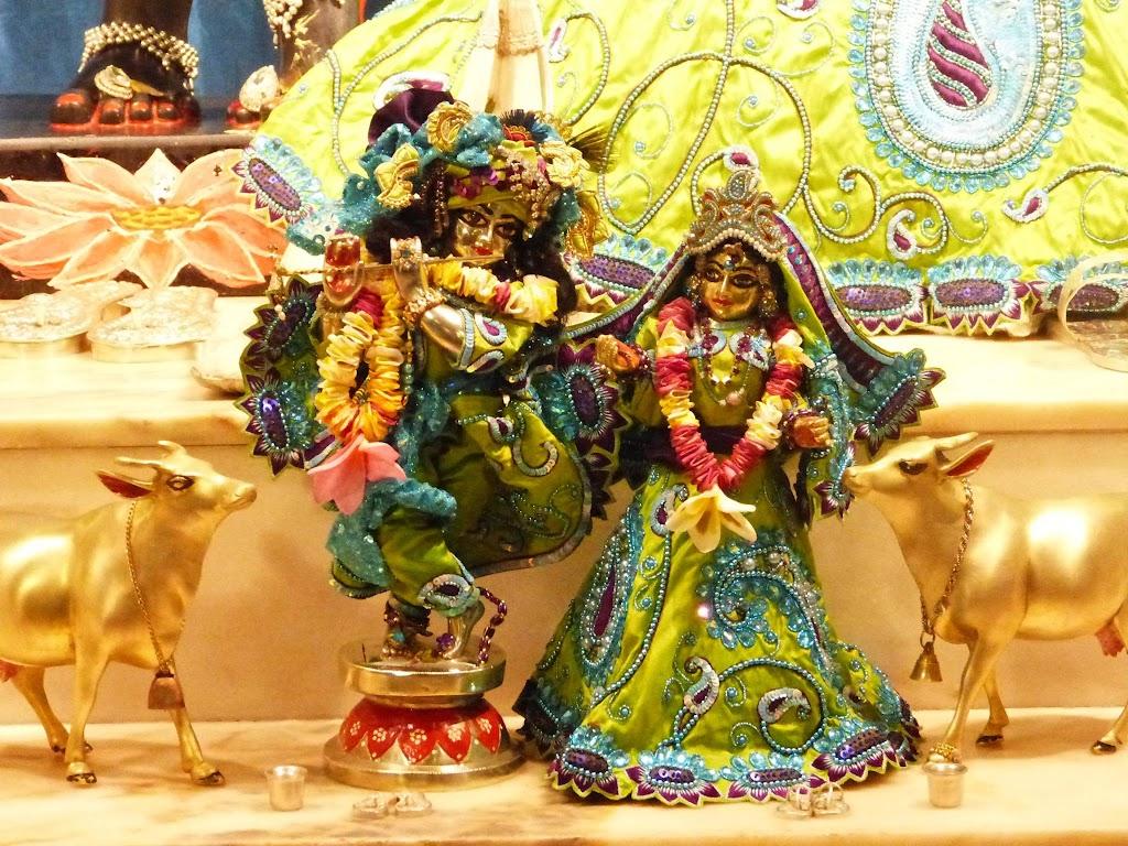 ISKCON New Govardhan Deity Darshan 01 Mar 2016 (12)