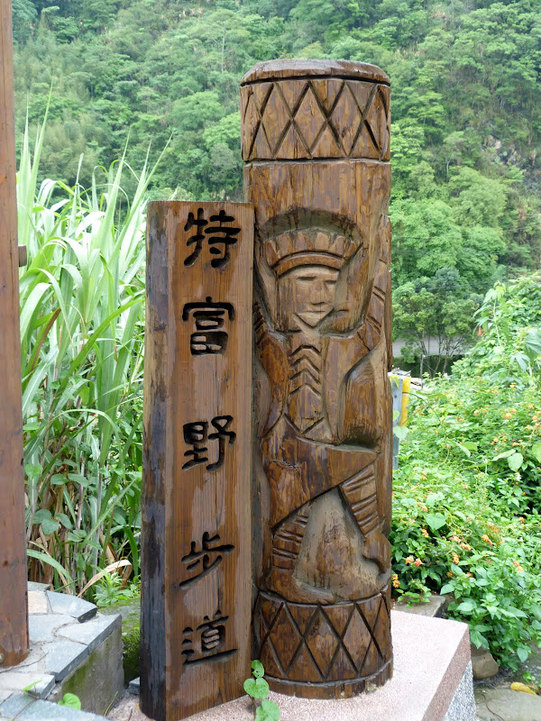 TAIWAN  Dans la region d ALISHAN - P1130776.JPG