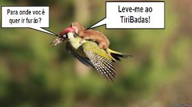 Meme da dupla voadora viralizado nas redes sociais, leve-me ao TiriBadas
