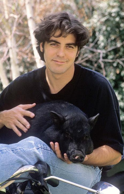 George Clooney and his pig Max