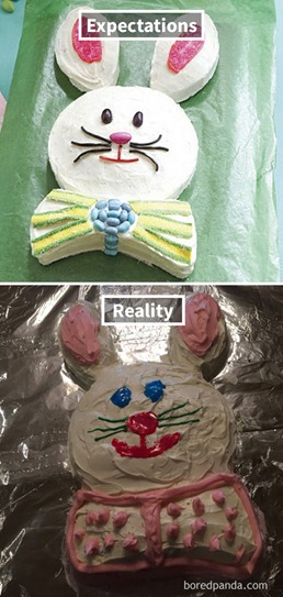 funny-cake-fails-expectations-reality-24-58dba1ab20ac6__605