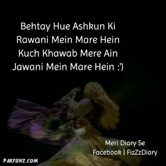 Heartless Dp For Whatsapp: Meri Diary Se Inspiring Urdu Poetry Images