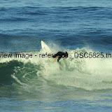 _DSC5825.thumb.jpg