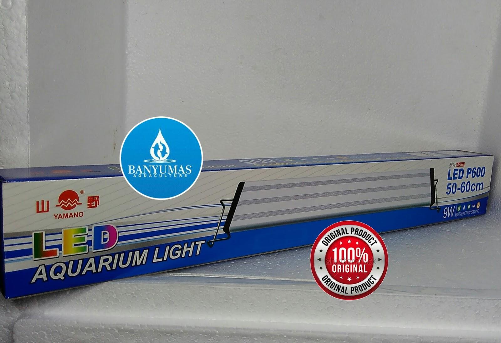 A016 Lampu Aquarium Led Yamano 50 60cm Aquascape Tanning Louhan Ikan 3 Watt Minggu 17 September 2017