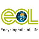Follow eol on twitter