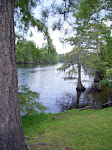 sam-houston-jones-state-park-lake-charles-la-2009 6-23-2009 2-52-22 PM 7-3-2009 10-53-37 AM.JPG