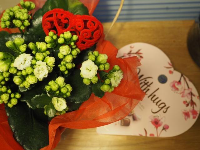 Suklaata ja kukkia ystävällä