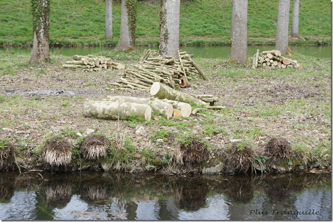 Camouflage Logs
