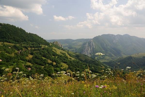 Blick auf Valea Uzei