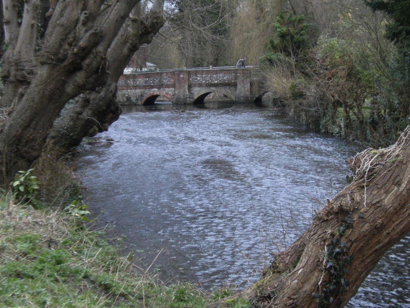 1102050031 River Darent, Shoreham