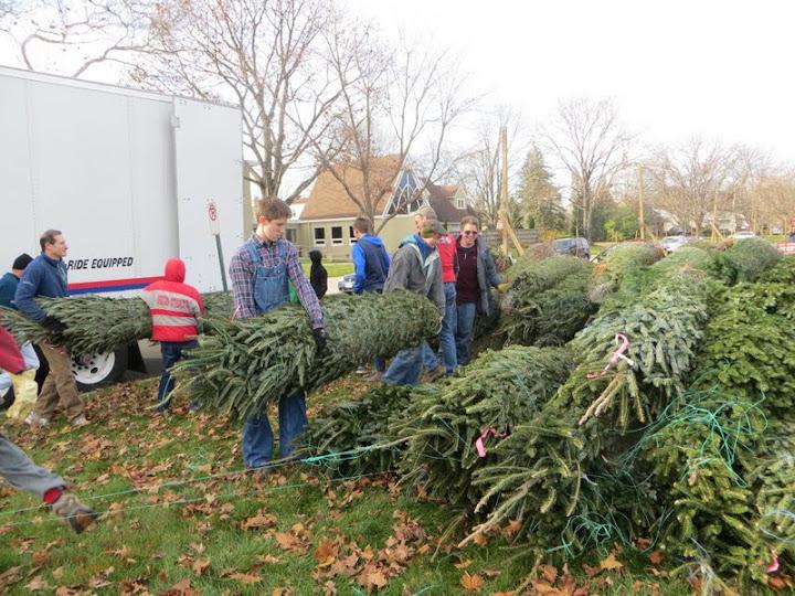 Christmas Tree Lot - IMG_1808.JPG