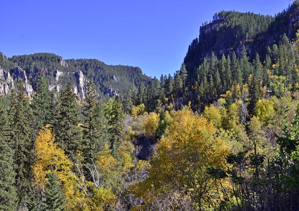 Spearfish Canyon3