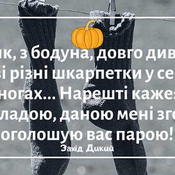 Гумор за день та звідки третій голос у кандидата Василюка