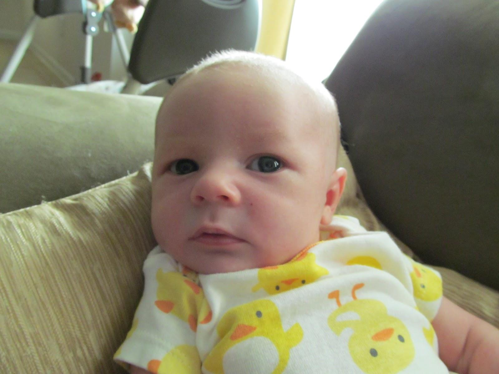 Meet Marshall! - IMG_0455.JPG