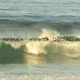 _DSC5843.thumb.jpg