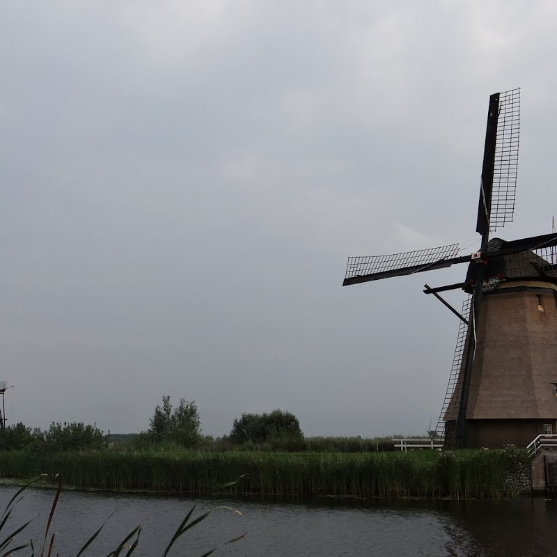 Day_6_Kinderdijk_34.JPG
