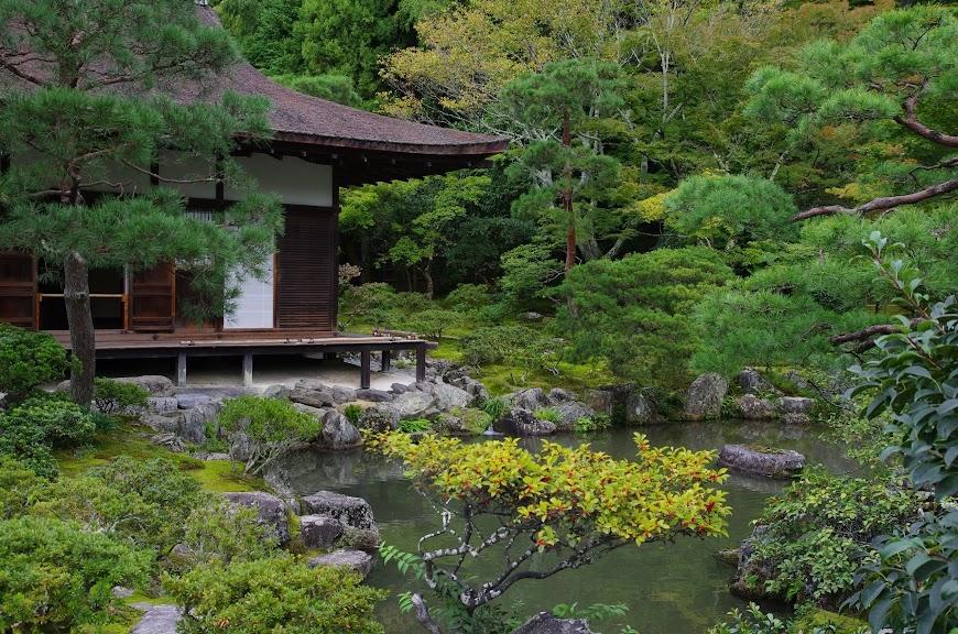 kyoto_2016_0058.JPG