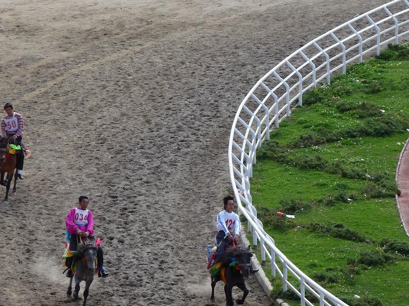 course de trot,jamais plus de trois chevaux