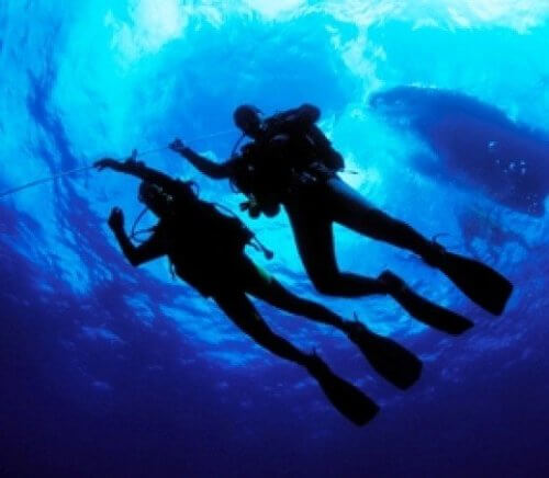 Морская Раковина и мечта