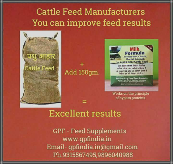 GPF Poultry Feed Supplements/Additives: Results / Milk Formula
