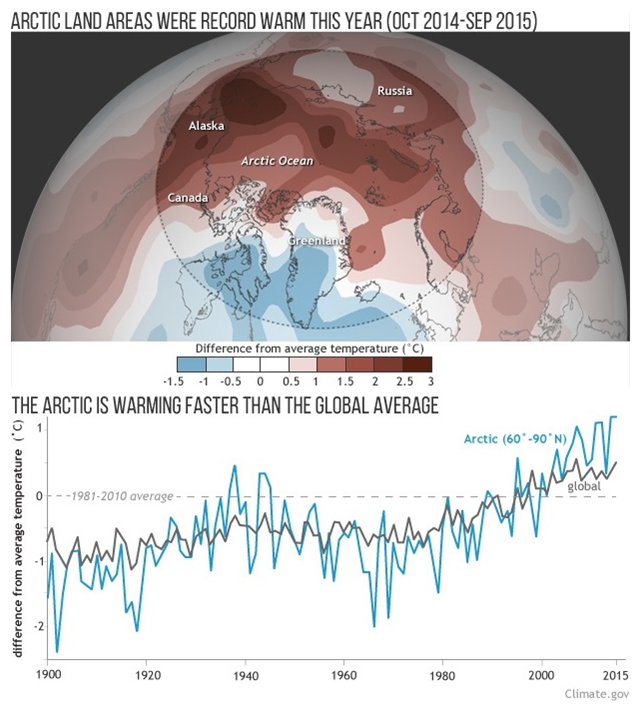 Top: Average temperature for October 2014-September 2015 compared to the 1981-2010 average. All around the Arctic, temperatures were much warmer than average, with only Greenland and a small part of northeastern Canada near or below average. Bottom: Annual temperatures for the Arctic (blue line, representing 60°N - 90°N) and the globe (black line) since 1900. The trend is clear: the Arctic has warmed more than the globe as a whole. Graphic: climate.gov