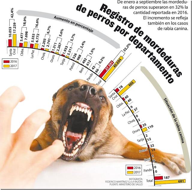 Cada día, 150 personas son mordidas por perros en Bolivia