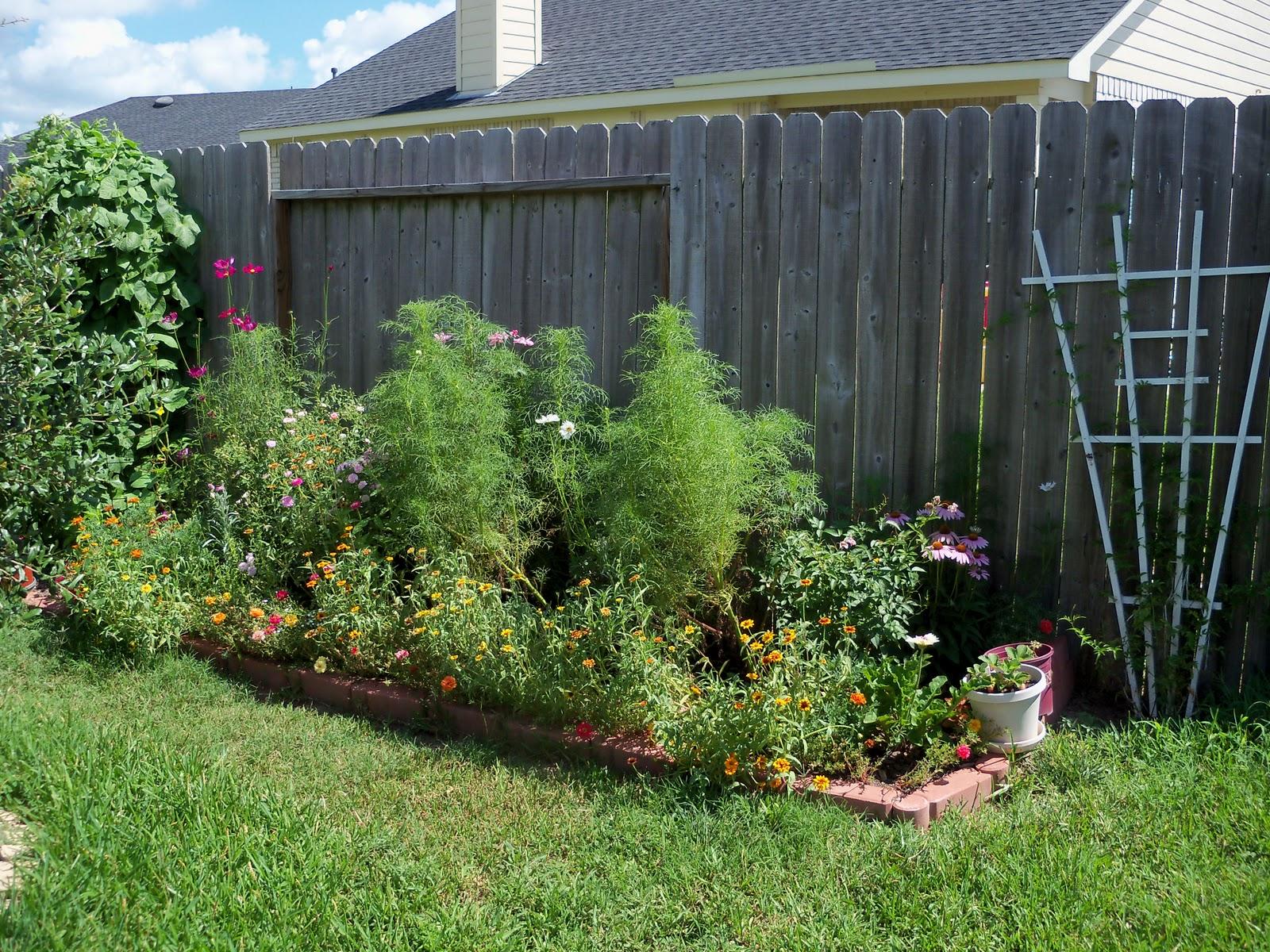 Gardening 2010, Part Three - 101_4283.JPG