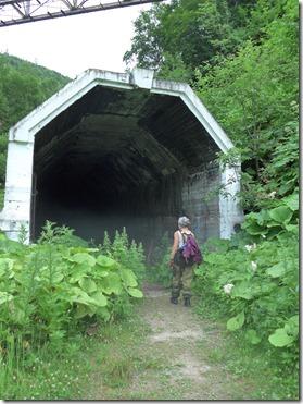 pont du diable le tunel