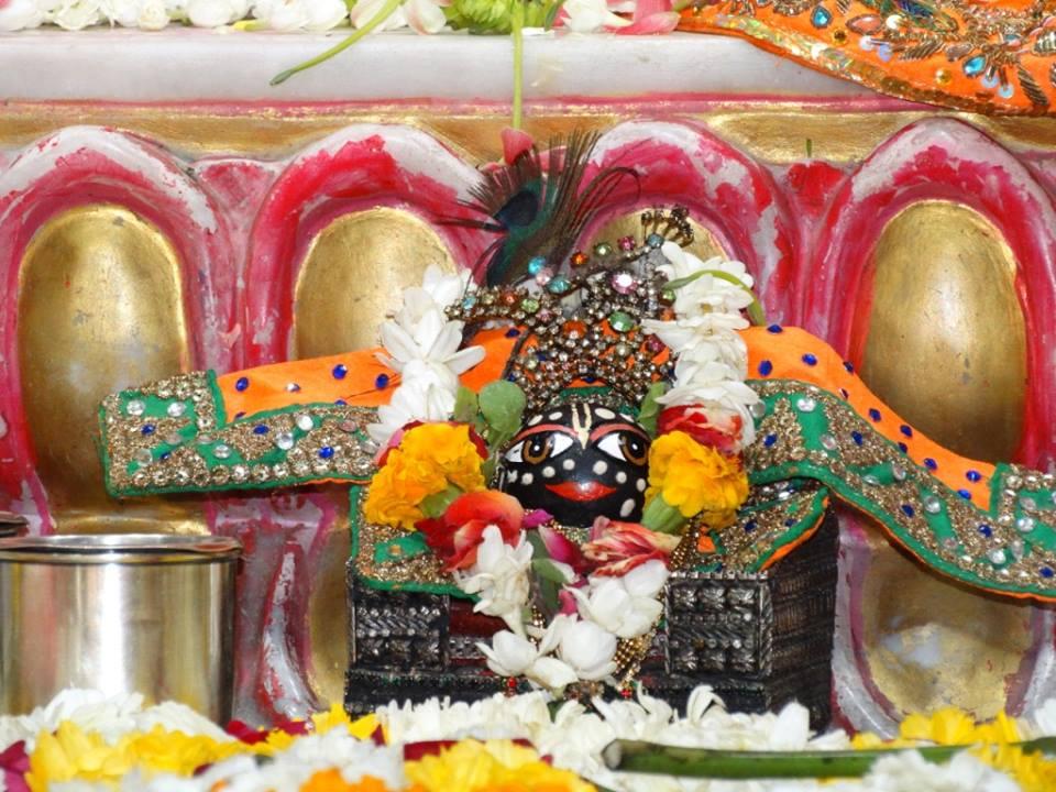 ISKCON Punjabi Bagh Deity Darshan 09 April 2016 (17)