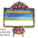 VSW03.jpg