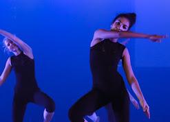 Han Balk Voorster Dansdag 2016-3363.jpg