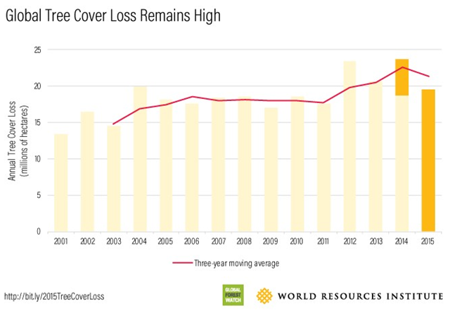Global tree cover loss remained high in 2015. That year, the world lost nearly 20 million hectares (49 million acres) of tree cover, an area the size of Uganda. Though the current estimate for 2015 tree cover loss is lower than that of 2014, the overall trend of global tree cover loss (defined as a three-year moving average indicated by the red line in the chart below) reached the second-highest point on record in 2015. The world also lost 47 percent more tree cover in 2015 than in 2001. Graphic: World Resources Institute