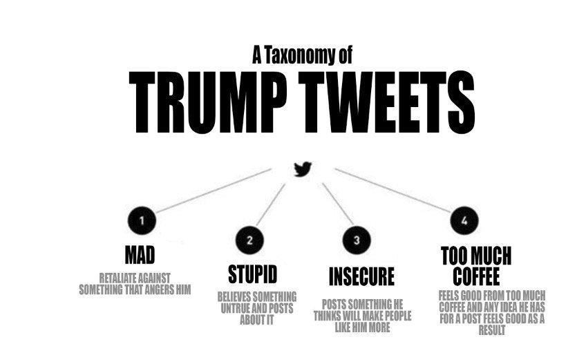 Trump tweets 2