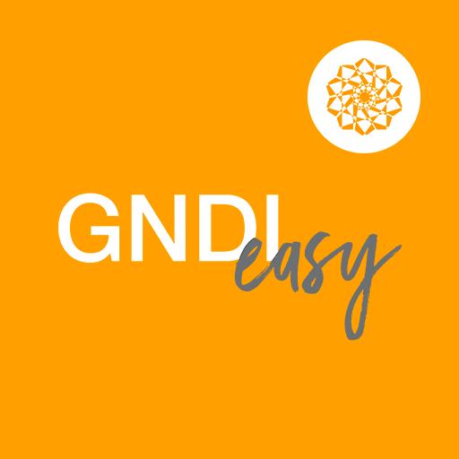 GNDI Easy