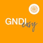 GNDI Easy icon