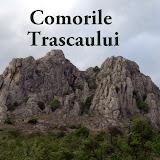 2009-05- 9-10 Comorile Trascaului
