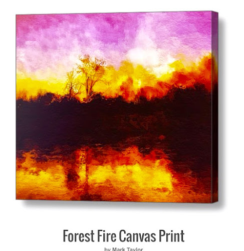 Forest Fire by MA