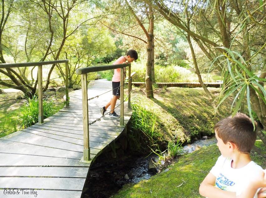 Ir con niños al Jardín Botánico de Asturias