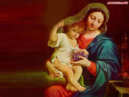 20 hình ảnh đẹp về đức mẹ Maria cho người Công Giáo