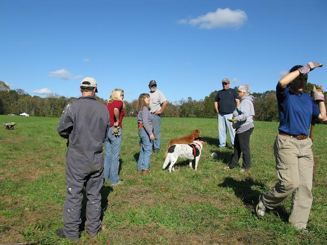 Guilford Salt Meadows Sanctuary Planting - IMG_7828.JPG