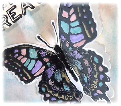 Butterfly Close_inlaid_apieceofheartblog