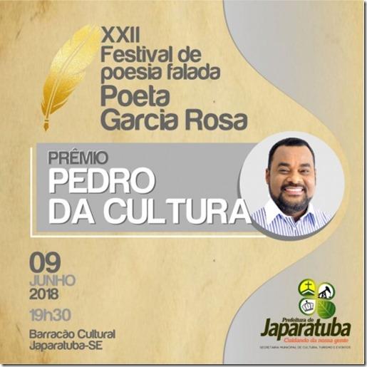 XXII Festival de Poesia Falada